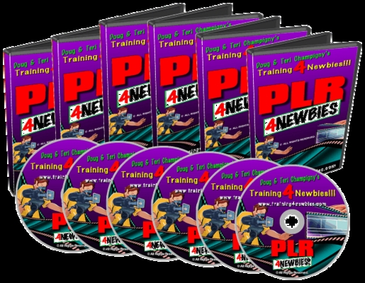 Product picture PLR For Newbies - Make Money Online